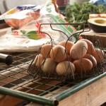 eggsgloriouseggs.jpg